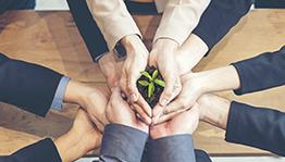 Gestão de Negócios Sustentáveis e Empreendedorismo Social